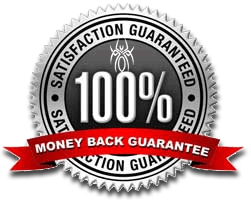 JoyceMedia Web Design guarantee