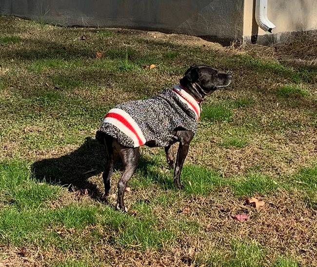 Chula sweater